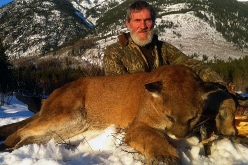 Cougar, Lynx, Bobcat, Wolf Hunts