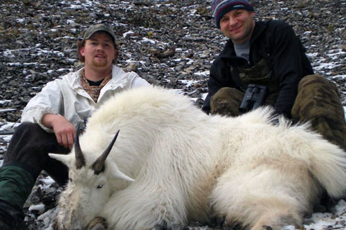 Rocky Mountain Goat Hunts