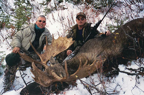 Shiras Moose Hunts