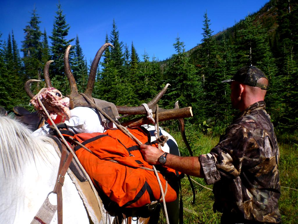 Grizzly Basin Outfitters - Hunt Memories